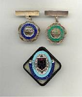 Oldham School of Nursing badges.