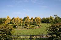Inner Wheel Memorial Garden at National Memorial Arboretum