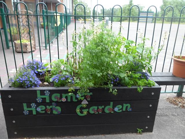 Rochdale News | News Headlines | Hamer Community Primary