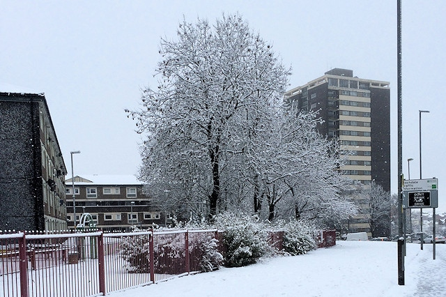 Rochdale could be left dreaming of a white Christmas