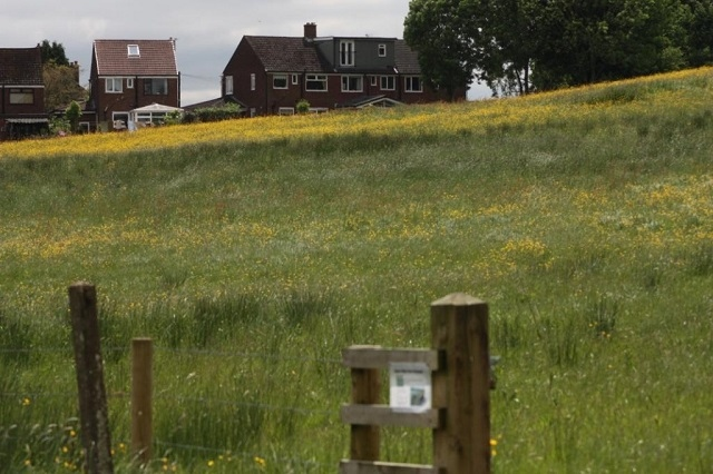 New housing must take into account wildlife concerns, says The Wildlife Trusts