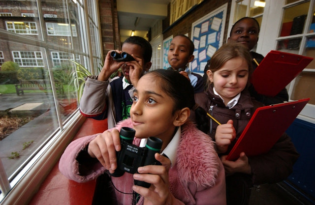 Children watching birds at school, RSPB Big Schools Birdwatch