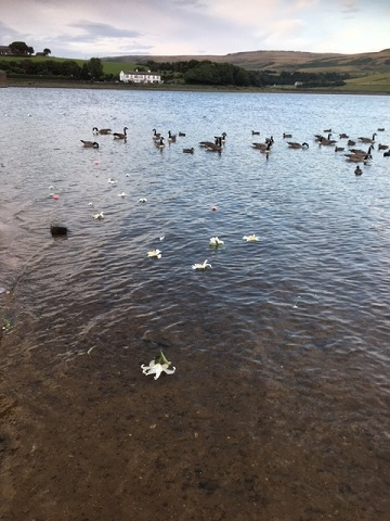 The group cast white flowers into the lake in memory of those who jumped into the river in a vain bid to ease their radiation burns