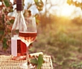 Successful ageing� linked to harmful drinking among over 50s