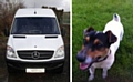 A Mercedes van similar to the one that was stolen and Buddy the Jack Russell terrier.