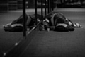 Rough sleeping on the rise