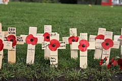 Poppy crosses commemorating those who fell in the World Wars