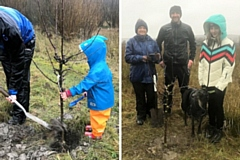Apple, plum and cherry trees have been planted in Whitworth